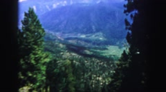 1958: forest mountain scenic view from window of trees in daytime COLORADO Stock Footage
