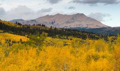 Fall Color Many Glacier East Side National Park Montana Stock Photos
