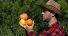 Attractive Bio Agriculturist Holding and Quality Checking Citrus Fruits on Field Stock Footage