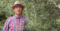 Agriculturist Man Full of Confidence Looking at Camera With Lots of Olive Trees Stock Footage