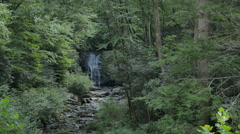 Cinematic Meigs Waterfall Deep in the Smoky Mountains Woods Stock Footage