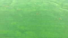 Flying over the vast green field of winter wheat Stock Footage