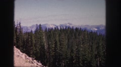 1958: green coniferous forest in the valley of blue mountains  Stock Footage