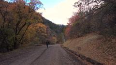 Man enjoys mountain stroll in autumn colors Stock Footage