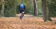 English Woodland: Cyclist in Epping Forest Stock Footage
