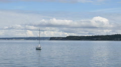 Anchored sailboat in Puget Sound seagulls squawk dog barks Stock Footage