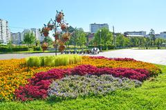 Moscow, Russia - September 01.2016. flower bed in Zelenograd in Moscow, Russi Stock Photos