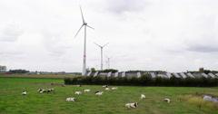 Wind turbines, solar panels on a farm Belgium Stock Footage