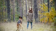 Young woman playing with a shepherd dog in autumn forest - throws a stick, slow Stock Footage