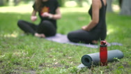Women sit in the park and talk. Stock Footage