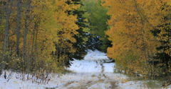 Mountain road snow and autumn colors forest DCI 4K Stock Footage