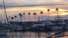 Colorful sun setting as yacht makes way in harbor with palm trees and docked Stock Footage