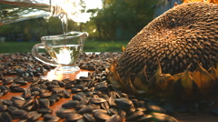 Sunflower oil and sunflower seeds on nature. Slow motion. Stock Footage