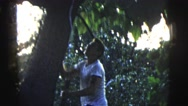 1958: man in a white shirt climbs a tree and then hangs from a branch. NEW YORK Stock Footage