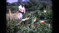 1960: a garden is seen WAUCONDA, ILLINOIS Stock Footage