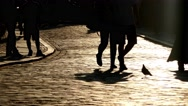 Silhouette unrecognizable crowd of people and a pigeon walking in the street Stock Footage