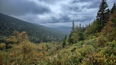 Mountain 4K timelapse with forest and cloudy sky Stock Footage