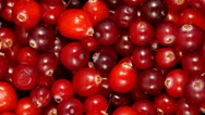 4k Cranberry berries seamless rotation Stock Footage