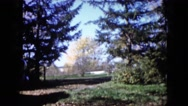 1960: park with full of trees of different shapes and colors WAUCONDA, ILLINOIS Stock Footage