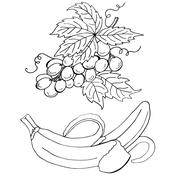 High quality original illustration of grape and banana, isolated Stock Illustration
