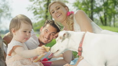 CLOSE UP: Cheerful baby daughter and cute Jack Russell pet dog eating cookies Stock Footage