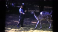 1959: small boy feeding deer CATSKILL GAME FARM, NEW YORK Stock Footage
