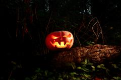 Halloween Scary and creepy pumpkin on a log in the darkness with the glow fro Kuvituskuvat