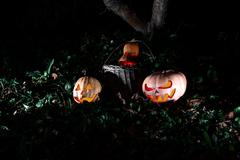 Halloween three pumpkins in leaves and grass in the dark, scary and creepy fu Kuvituskuvat