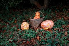 Halloween three pumpkins in leaves and grass in the dark, scary and creepy fu Stock Photos