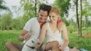 CLOSE UP: Young couple scratching cute little dog and sitting on blanket in park Stock Footage