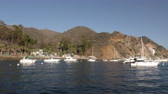 Moored yachts bask in the morning light in front of paradise cove Stock Footage