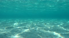 Underwater shallow sandy seabed natural scene Stock Footage