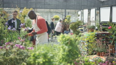 4K Friendly worker in garden center, checking the plants & assisting customers Stock Footage