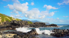 Beach at Kaena Point on Oahu Stock Footage