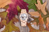 Simple watch lying in autumn leaves and rustic wood background Stock Photos