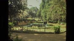 1974: the mountain and the trees are so amazing that colour is so full of spirit Stock Footage
