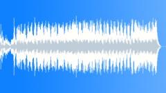 Animal Kingdom (Hybrid Percussion) Stock Music