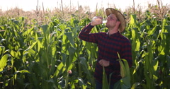 Thirsty Farmer Peasant Character Drinking Water Taking Break From Field Working Stock Footage
