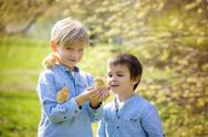 Two friends in the park, playing with cute newborn chicks Stock Photos