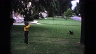 1964: a little child playing with his dog in the front yard in a sunny day Stock Footage