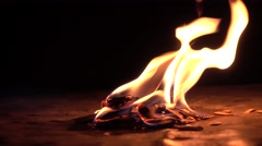 Burning wood in the dark. Small fire against black background. 4K close up video Stock Footage
