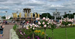 """Flowering roses, sculpture """"Friendship of peoples"""". Fountain of the Soviet era Stock Footage"""