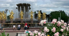 """A blooming rose Bush in front of the fountain """"Friendship of peoples"""" at ENEA Stock Footage"""