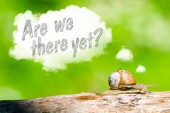 Snail thinking are we there yet Stock Photos