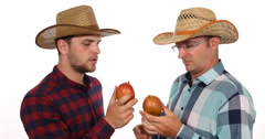 Cultivator Farmer Men Examining Volume and Quality Checking Fresh Juicy Mango Stock Footage