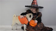 Cute girl and her little dog are dressed in suits for Halloween. Child in an Stock Footage