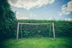 Backyard soccer goal on a green lawn Stock Photos