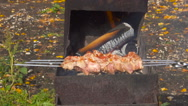 Pig meat pieces being fried on a charcoal grill  Barbecue With Delicious Gril Stock Footage