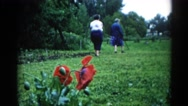 1962: old couple is walking through the field rich of greenery CHICAGOLAND AREA Stock Footage