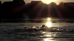 Professional Sportswoman Swimming on the Back in the Lake at Sunset. Stock Footage